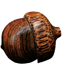 Brazilian Rosewood Acorn with Red Palm cap