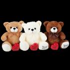 Huggable Teddy Bear Cremation Urn