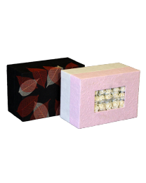 Biodegradable Memory Chest Urn Insert